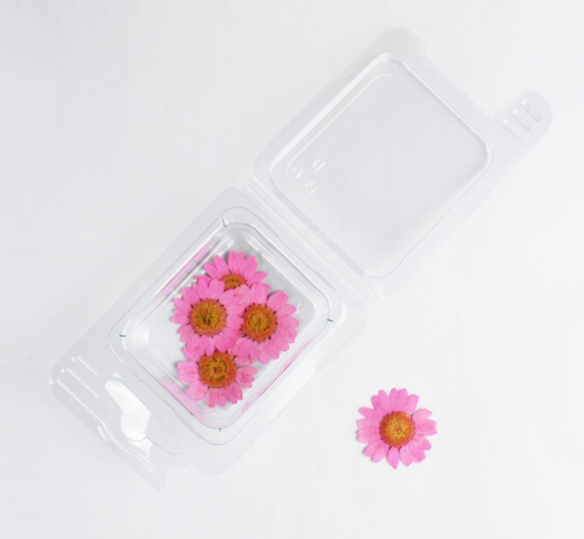 Fleurs séchées de camomille