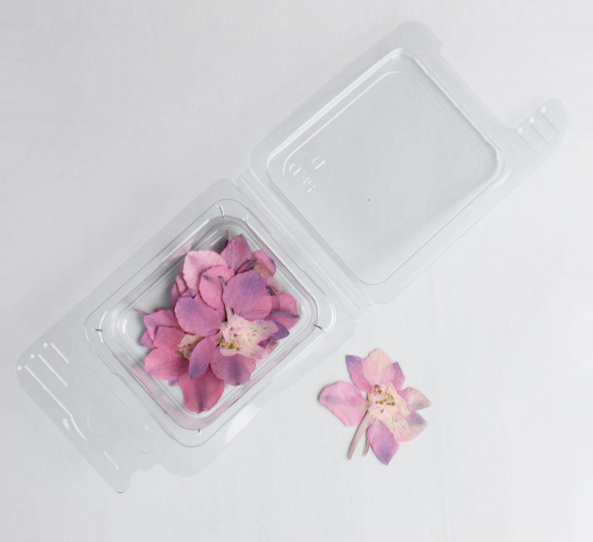 Fleurs séchées Fleurs Rosa pour bijoux